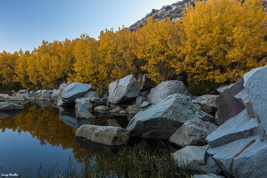 IMAGE: https://larryhendler.smugmug.com/Latest-Uploads/Eastern-Sierra-Fall-Foliage/i-tHZvgqv/0/O/3S9B7149.jpg